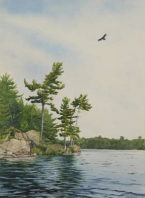 Rocks And Pines No.1 Art Print by Debbie Homewood