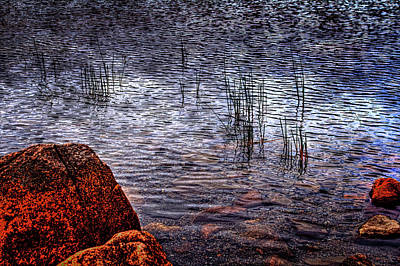 Photograph - Rocks And Reeds At Jordan Pond by Roger Passman