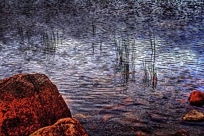 Photograph - Rocks And Reeds At Jordan Pond by Roger Passman