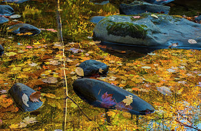 Photograph - Rocks And Reflections by Peg Runyan