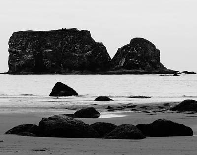 Photograph - Rocks And Sea Stacks In Washington by Dan Sproul
