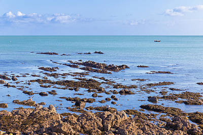 Art Print featuring the photograph Rocks And Seaweed And Seagulls In The Irish Sea At Howth by Semmick Photo