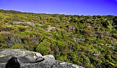 Photograph - Rocks And Shrubs Of North Head by Miroslava Jurcik