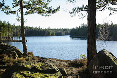 Photograph - Rocks And Tree Trunks By Lakeside by Kennerth and Birgitta Kullman