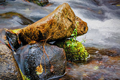 Photograph - Rocks In The Creek by Maria Coulson