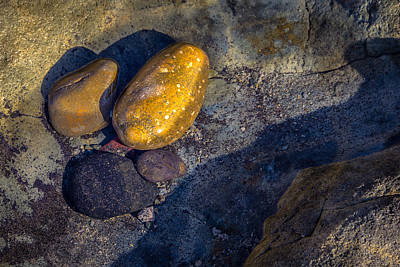 Photograph - Rocks In Tidepool by Randy Bayne