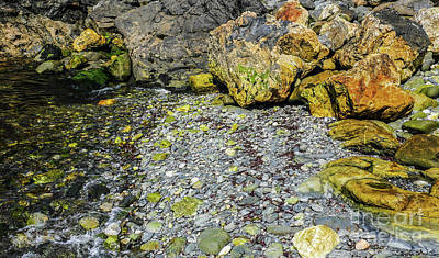 Photograph - Rocks In Water #10 by Lexa Harpell