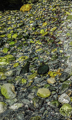 Photograph - Rocks In Water #11 by Lexa Harpell