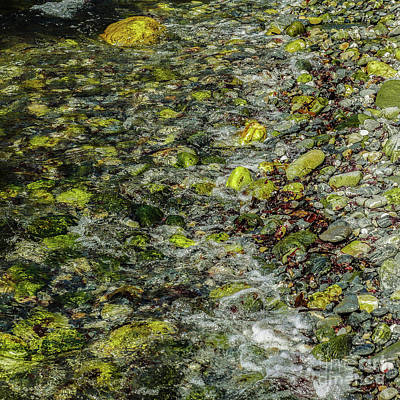 Photograph - Rocks In Water #9 by Lexa Harpell