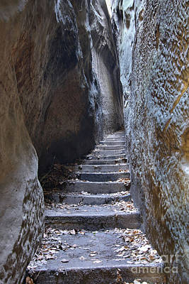 Photograph - Rocks Stair - Narrow Path In Bohemian Paradise by Michal Boubin
