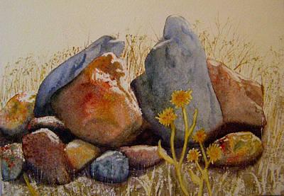 Rocks Art Print by Teresa Boston