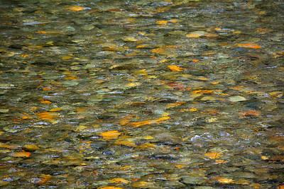 Rocks Under Water Art Print