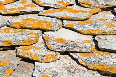 Slate Pattern Photograph - Rocks With Lichen by Tom Gowanlock