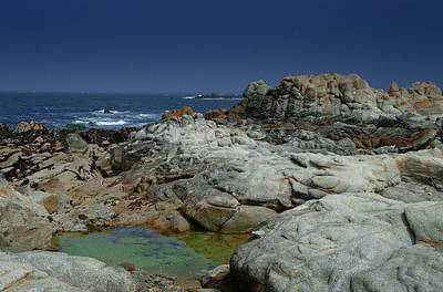 Photograph - Rocky Beach by Renee Hardison