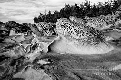 Photograph - Rocky Beach Shore Acres Oregon by Bob Christopher
