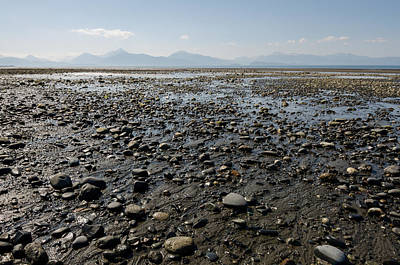 Photograph - Rocky Beaches Of Alaska by Margaret Pitcher