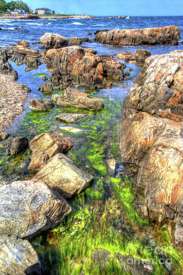 Photograph - Rocky Coast by LR Photography