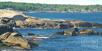 Painting - Rocky Coast Maine by Paul Galante
