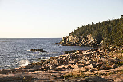Rocky Coast Of Acadia Art Print by Frank Russell