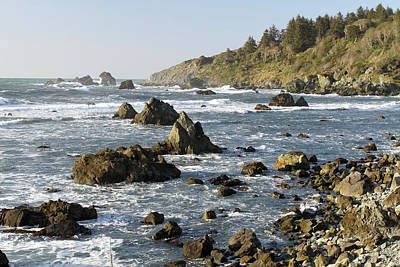 Photograph - Rocky Coast, Patrick's Point Sp, California by Robert Mutch