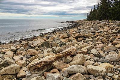 Photograph - Rocky Coast Schoodic Point by Elizabeth Dow