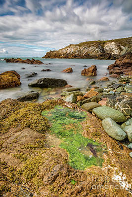 Photograph - Rocky Coastline  by Adrian Evans