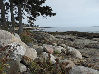 Photograph - Rocky Coastline Of Maine by Bill Tomsa