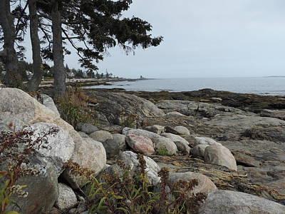 Photograph - Rocky Coastline Of Maine by Bill Tomsa