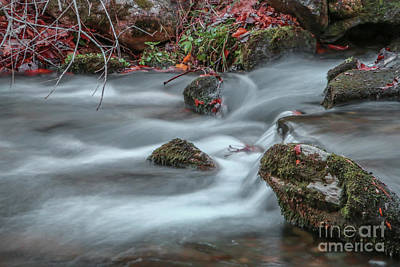 Photograph - Rocky Flowing Stream by Tom Claud