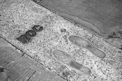 Rocky Balboa Photograph - Rocky by Frank Mari