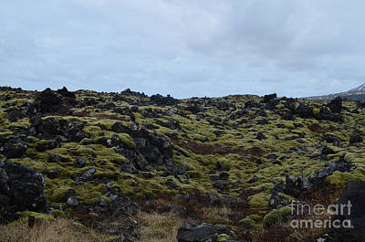 Photograph - Rocky Icelandic Lava Field With Green Moss  by DejaVu Designs