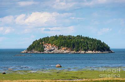 Photograph - Rocky Island by Les Palenik