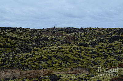 Photograph - Rocky Landscape In Iceland With Volcanic Rocks  by DejaVu Designs