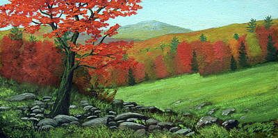 Rocky Meadow Art Print