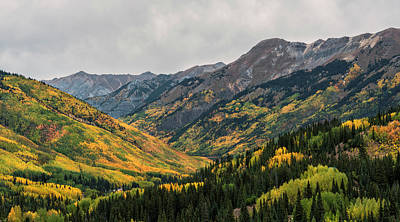 Photograph - Rocky Mountain Autumn by Loree Johnson