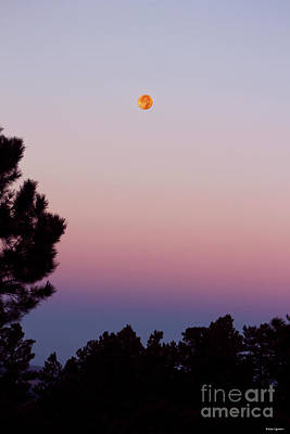 Photograph - Rocky Mountain Dusk Moon by Dale E Jackson