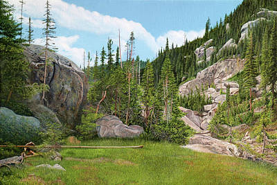 Rocky Mountain Forest Art Print