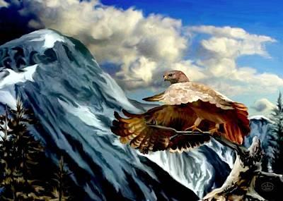 Rocky Mountain Hawk Art Print by Ron Chambers