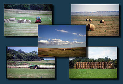 Bales Mixed Media - Rocky Mountain Hay Rolls Collage 02 by Thomas Woolworth