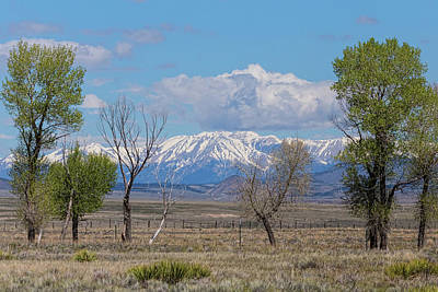 Photograph - Rocky Mountain Landscape by James BO Insogna