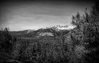 Photograph - Rocky Mountain National Park 5 Black And White by Judy Vincent