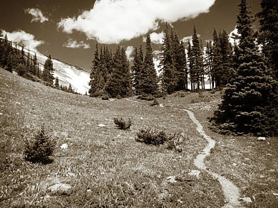 Photograph - Rocky Mountain Peace Trail by Marilyn Hunt