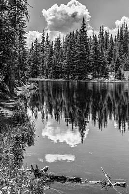 Photograph - Rocky Mountain Reflection  by John McGraw