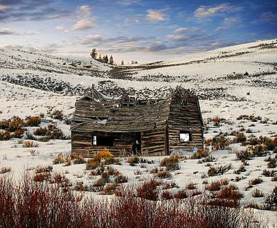 Photograph - Rocky Mountain Relic by Joe Duket