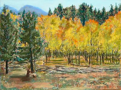 Rocky Mountain Siesta Art Print by Mary Benke