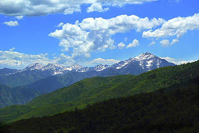 Photograph - Rocky Mountain Summer by Marie Leslie