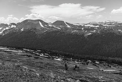 Photograph - Rocky Mountain View  by John McGraw