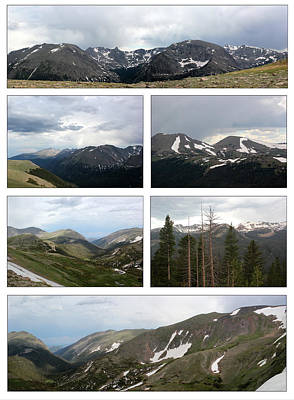 Photograph - Rocky Mountain White Background by Mary Bedy