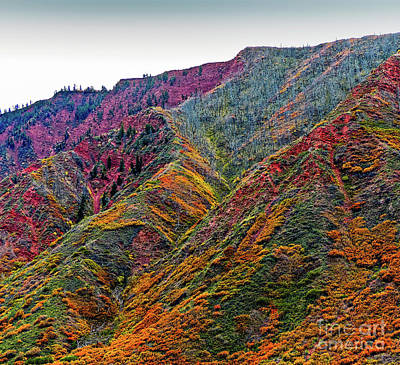 Photograph - Rocky Mountains In The Fall by Randy J Heath