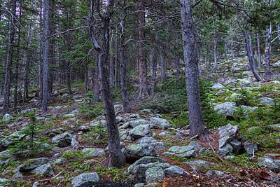 Photograph - Rocky Nature Landscape by James BO Insogna